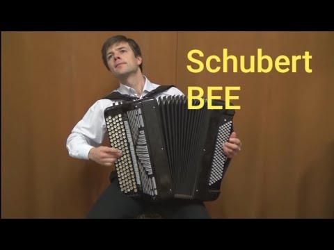 Шуберт Франц - Пчёлка