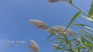 Sharon Manca - Come Fiori (Official video)