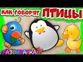 Про птиц для детей Как говорят птицы Учим птиц для детей Развивающие видео про птиц Пазлы mp3