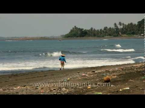 Pollution and garbage on Indonesia's beaches