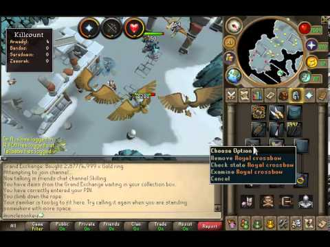 Runescape: Training Range and Making Money at Aviansies