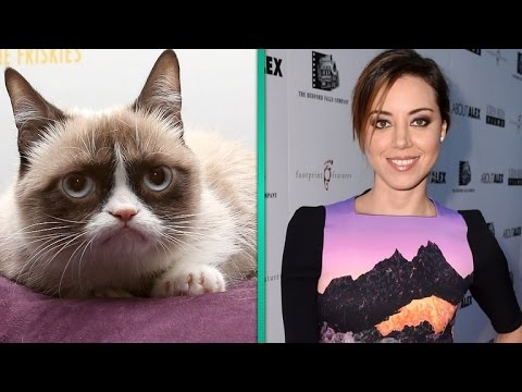 Grumpy Cat Finds Her Grumpy Voice in 'Parks and Recreation's' Aubrey Plaza
