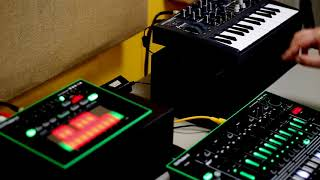 TR-8, TB-3 and MicroBrute jam