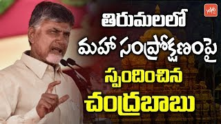 AP CM Chandrababu Responds on Tirumala Temple Maha Samprokshanam