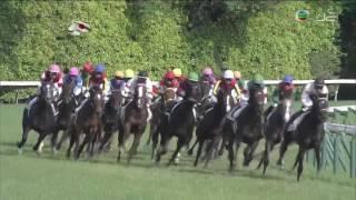 2017 Tokyo Yushun (Japanese Derby) International Group 1 2400m