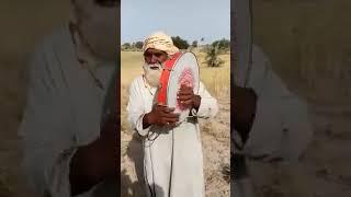 Pathan baba sing a song with darya dafli