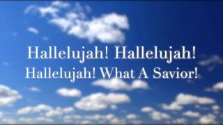Watch Darlene Zschech Hallelujah What A Savior (Live) video