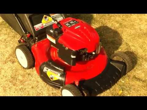 Troy Bilt .Briggs and Stratton 190cc governor adjustment (Coal Miner outsmarts Dentist!!!!!)