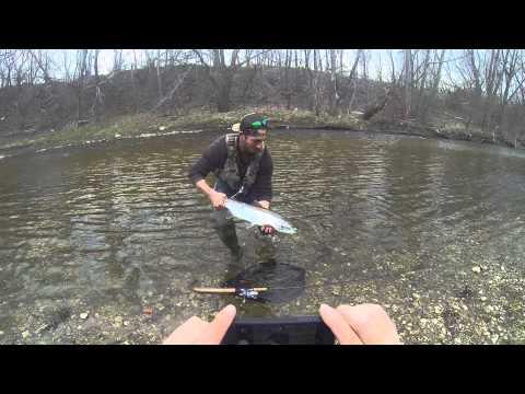 Float fishing steelhead!