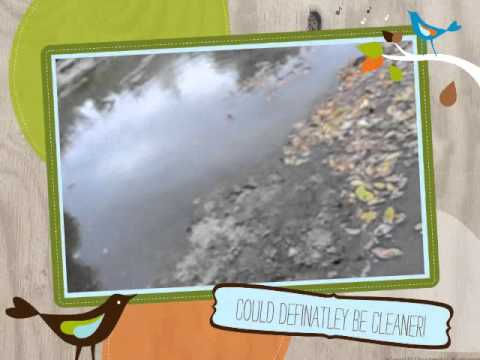 Indian Creek Water Pollution Presentation