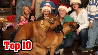 Top 10 AWKWARD FAMILY PHOTOS (Holiday Edition)