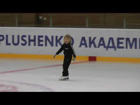 мини -экзамен Александра Плющенко 24.02.18