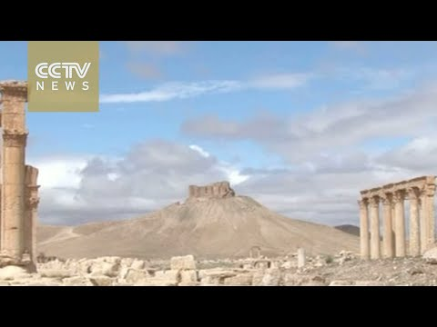Dozens dead in fighting for ancient Syrian city of Palmyra
