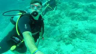 Sharm El Sheik Underwater