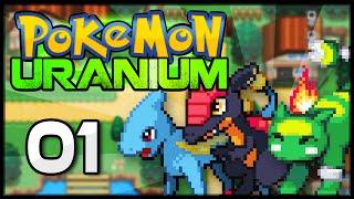 Pokémon Uranium - Episode 1   The Professor's Test!