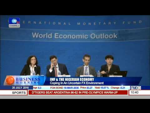 IMF & The Nigerian Economy: Coping With An Uncertain FX Environment