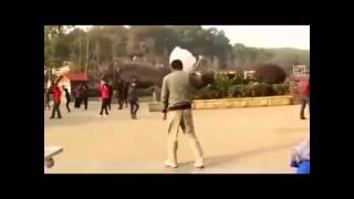 綿あめダンスをする男性のムーンウォークパフォーマンス♪