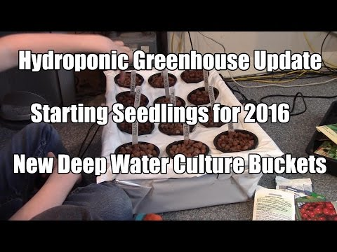 Hydroponic Greehnouse Update - New DWC Setup. Gardening with Kiddies.