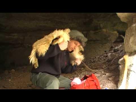 Épisode – 21 décembre 2012 : Mad in Bebert (Morgan Priest)