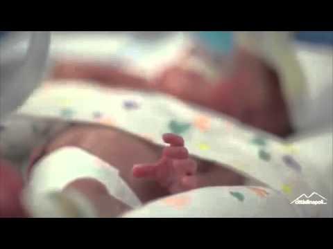 Anonymous - Hoggi la vita nasce
