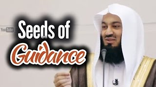 Seeds of Guidence – Mufti Ismail Menk