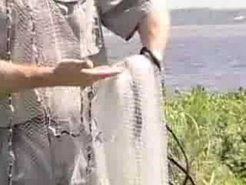 How To Throw a Cast Net. Simply the best.