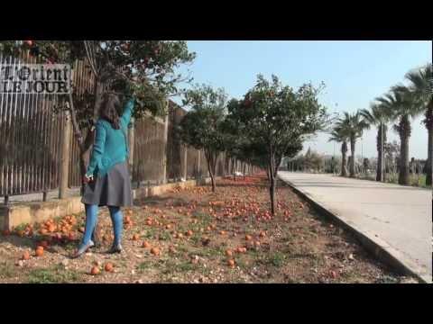 La Foire internationale de Tripoli, un espace fantôme, un poumon dans la ville 1/2 - OLJ
