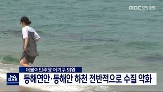 동해연안·동해안 하천 전반적으로 수질 악화