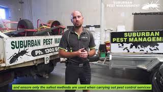 Pest Control at a Child Care Centre - Suburban Pest Management