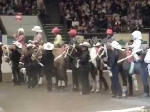 PFIZER FANTASIA HORSE SHOW