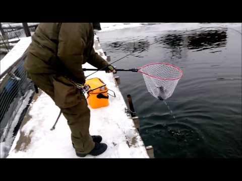 рыбалка на форель в новосибирске