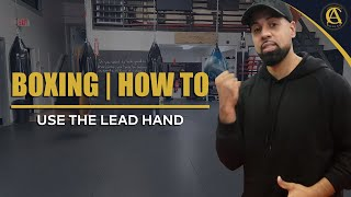Boxing   How to   Use the Lead Hand