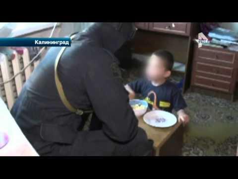 В Калининграде супружеская пара устроила притон