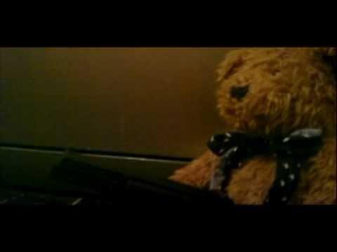 Killer Teddy Killer Teddy Bear