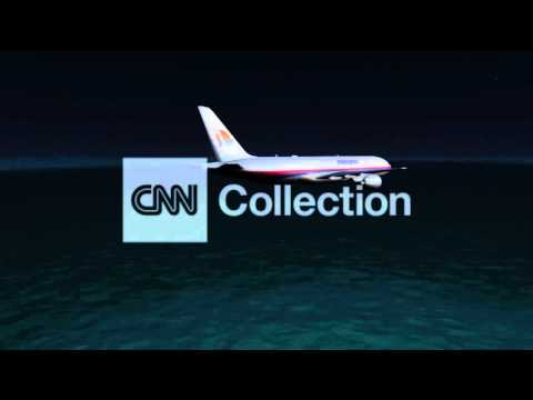 MALAYSIA AIRLINES: PLANE IN FLIGHT (ANIMATION)
