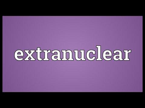 Header of extranuclear