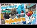 Sherbert in Tokyo! - The Big Akihabara Adventure! 秋葉原の大冒険
