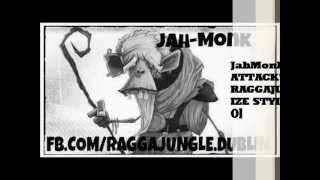 RAGGA JUNGLE - Ft. DJ JAH-MONK -