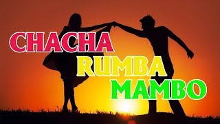 Tình Khúc CHACHA - RUMBA - MAMBO Chọn Lọc Hay Nhất - Guitarist Vô Thường