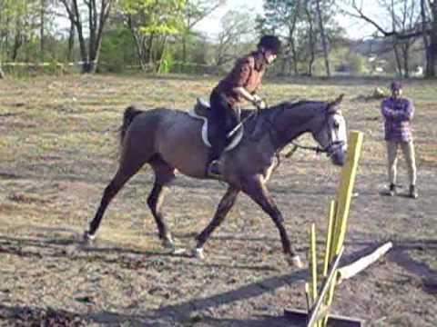 jazda konna (ćwiczymy półsiad)