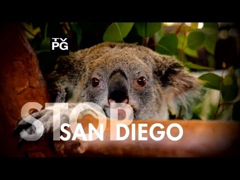Travel Time - SAN DIEGO (Full Episode)