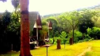 Budget bungalow at Kata