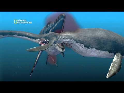 С точки зрения науки. Морские чудовища древности. FullHD