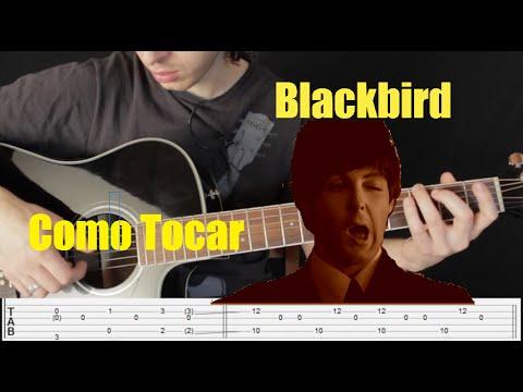 Como Tocar Blackbir - The Beatles (Paul Mccartney)-Intro y Verso-Tutorial - Guitarra Acustica - 1