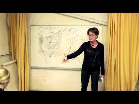 Gudrun Schyman pratar om Feminism.