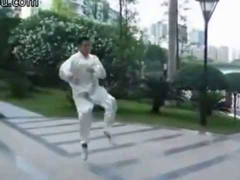 ChangChun BajiQuan Image 1