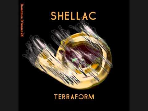 Shellac - Disgrace