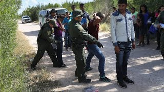 What Options Does the U.S. Have on Immigration? | NYT News