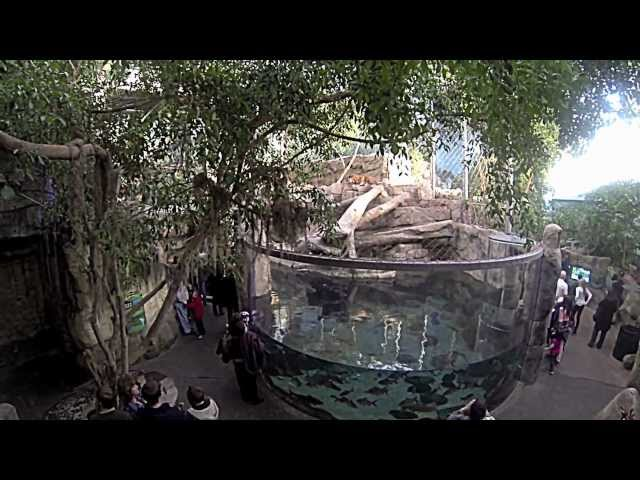 Downtown Aquarium - Denver, CO GoPro HERO3