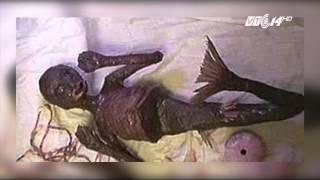 (VTC14)_Đã tìm ra được người tung tin bắt được nàng tiên cá